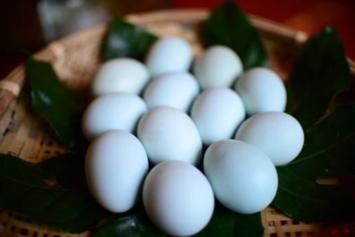 山沟里的布依族养鸡小哥:鸡蛋卖得越来越多了,真好