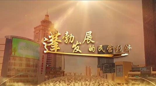 视频:蓬勃发展的民营经济